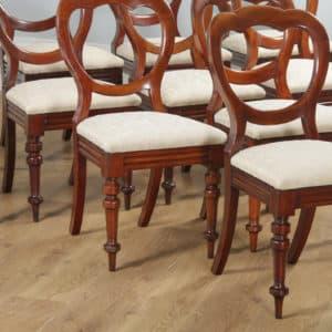 Antique English Victorian Set of 12 Twelve Mahogany Crown Top Balloon Back Dining Chairs (Circa 1880) - yolagray.com