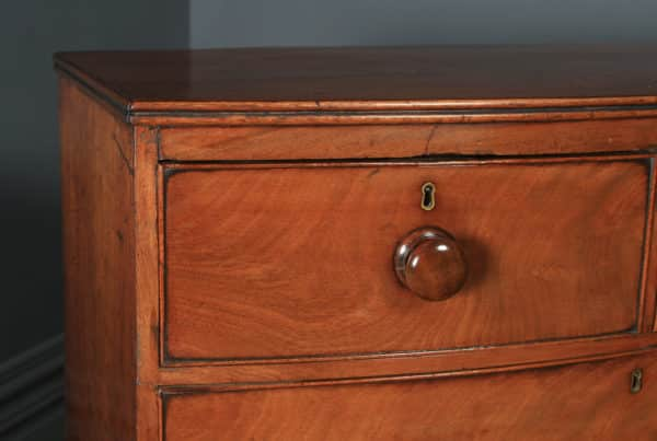 Antique English Georgian Regency Flame Mahogany Bow Front Chest of Drawers (Circa 1820) - yolagray.com