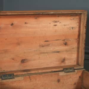 Small Antique English Victorian Pine Trunk Blanket Box / Chest / Coffee Table (Circa 1880) - yolagray.com