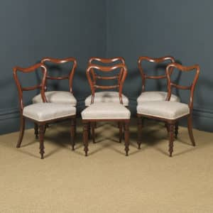 Antique English Victorian Set of Six 6 Mahogany Balloon Back Dining Chairs (Circa 1860) - yolagray.com