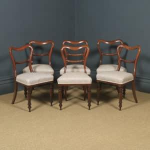 Antique English Victorian Set of Six 6 Mahogany Balloon Back Dining Chairs (Circa 1860) - yolagray.com