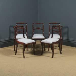 Antique English Georgian Regency Set of Five 5 Mahogany Rope Twist Dining Chairs (Circa 1820) - yolagray.com