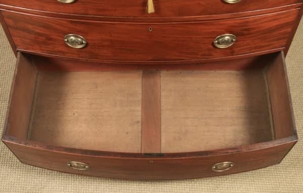 Antique English Georgian Regency Figured Mahogany Bow Front Chest of Drawers (Circa 1820) - yolagray.com