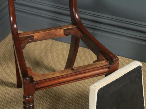 Antique English William IV Set of Six 6 Mahogany Bar Back Dining Chairs (Circa 1830) - yolagray.com